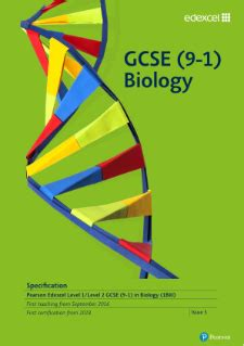 BBC Bitesize - GCSE Biology Single Science - Aerobic and